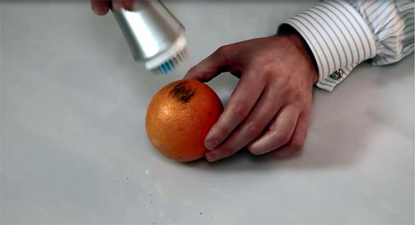 zeitgard 1 portakal testi